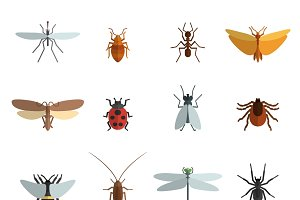 Insect icon flat set