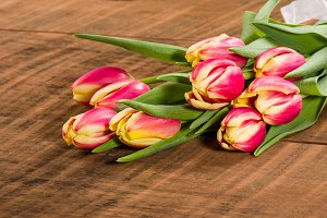 Tulips tied in a bundle with ribbon