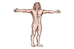 Vitruvian Man Arms Spread Front Etch
