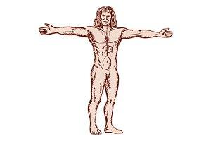 Vitruvian Man Arms Spread Front Etch