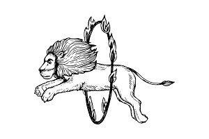 Circus lion jumps into fire ring engraving vector