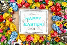 Easter background with spring flower