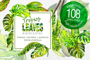 Tropics leaves monstera PNG set