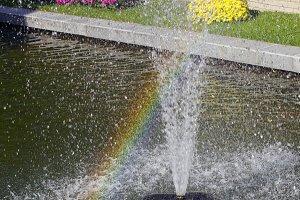 Rainbow in the spray of a fountain.