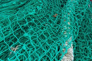Sea. Fishing nets.