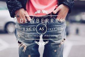 DEWBERRY VSCO Cam A5 LR preset