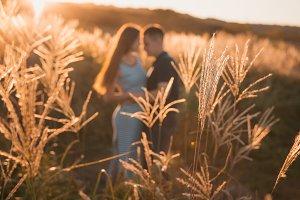 Couple behind autumn grass