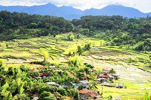 Village & rice terrace, Philippines