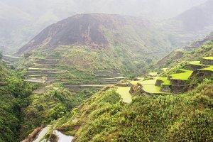Rice terrace in the rain