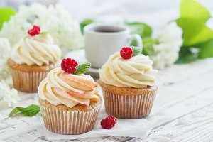 Delicate vanilla cupcakes with cream