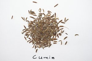 Black Cumin (Bunium bulbocastanum) seeds