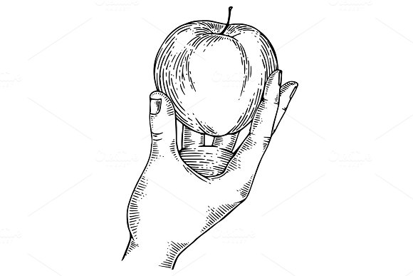 Apple in hand engraving vector illustration