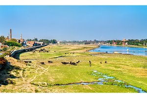 The Yamuna river in Agra city. India