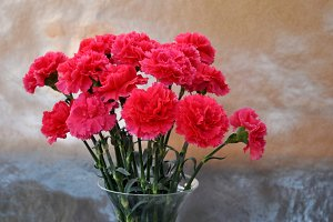 glass vase with carnations