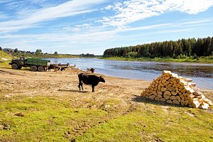 Russia, the circumpolar Urals. The village of Mansi peoples on the banks of the river