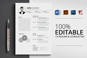 Professional Word CV
