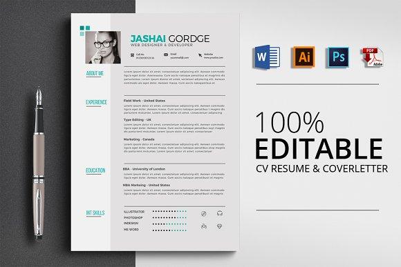Clean Resume CV Word Format