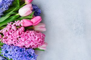 Hyacinth fresh flowers
