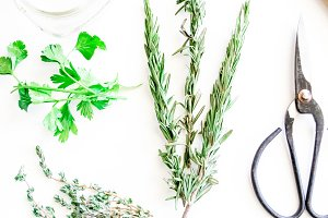 Herbs or Spice Images for Any Use