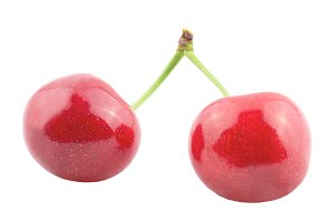 Two cherries isolated on white