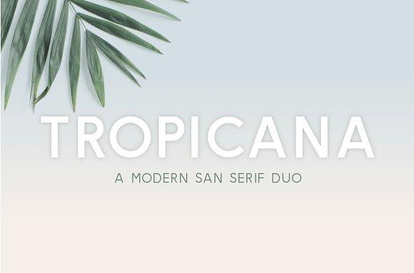 Tropicana San Serif Duo