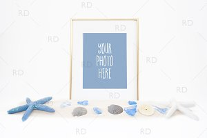 Seashells and Starfish Frame Mockup