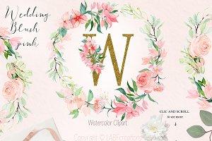 Blush pink bougainvillea flowers