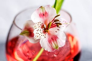 Flower on a wine glass