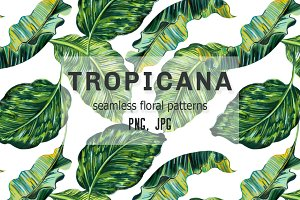 Tropical botanical patterns