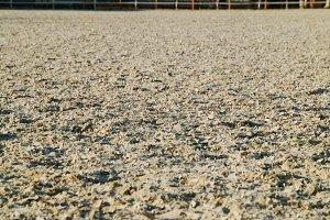 Horse riding pasture sawdust bokeh background
