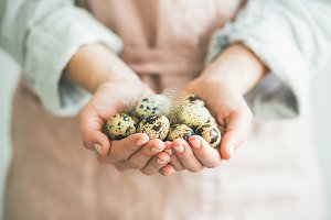 Quail eggs and feather in woman's hands, horizontal composition