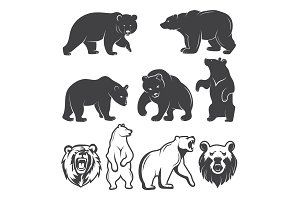 Illustrations of bears. Vector animals set