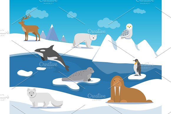 Arctic Landscape With Different Polar Animals