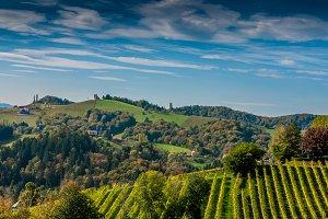 Hill / Landscape