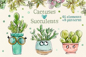 Cacti & Succulents set +8 patterns