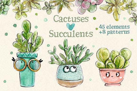 Cacti Succulents Set 8 Patterns