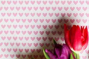 Tulips on hearts paper background