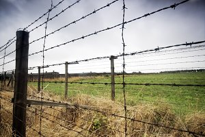 Barbed wire fence. Old prison