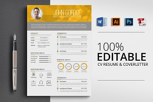 Professional Design Word CV