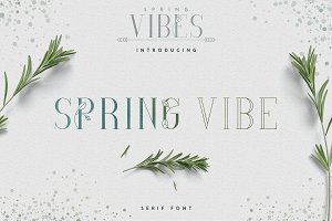 [Spring Vibes] SpringVibe Serif Font