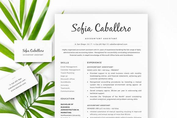 Accountant Assistant Resume CV