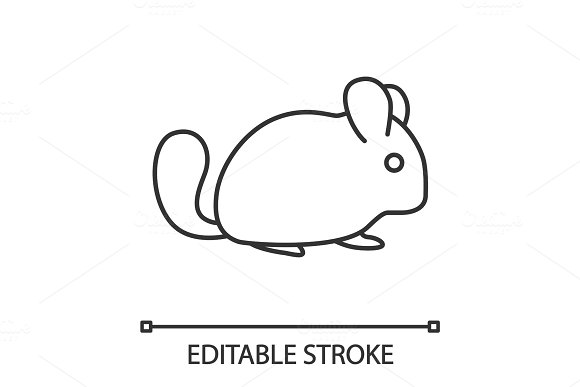 Chinchilla linear icon