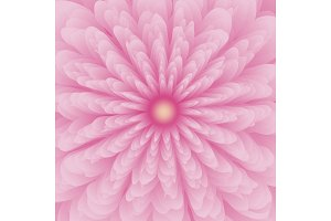 Pink flower background design