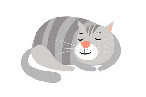 Cute cat. Domestic gray striped cat animal isolated on white, kitten vector