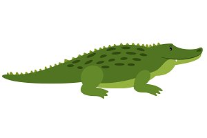 Vector Crocodile. Vector isolated cartoon alligator, african gator on white