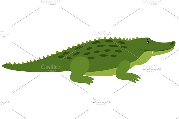 Vector Crocodile Vector Isolated Cartoon Alligator African Gator On White