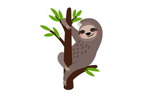 Sloth. Cute vector sloth bear animal character on tree branch isolated on white