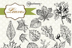 Vintage Leaves Clipart & Brushes