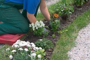 Landscape gardener at work