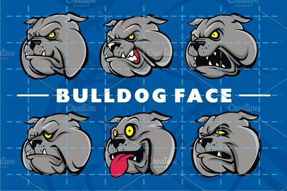 BULLDOG FACE PACK